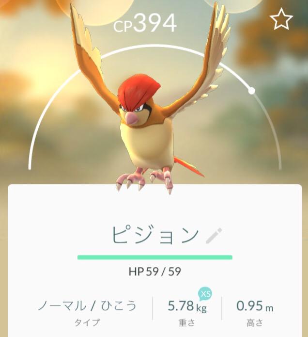 写真 2016-08-09 10 12 58