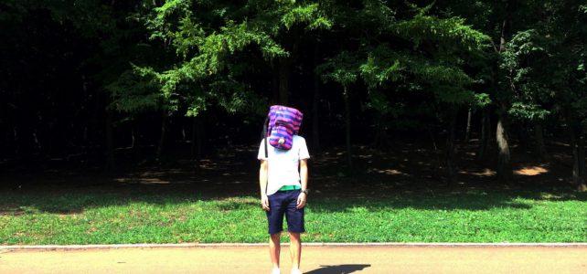 ポケモンGOの話をしながら歩いていたら、ど根性ガエル状態になった。