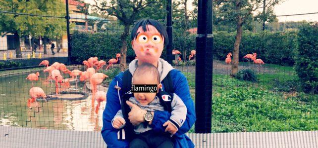 ひょっとこ、坊やと上野動物園へ行く